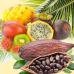 Кокос Cabana (Coconut Cabana) Ароматическое масло