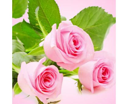 Розы свежесрезанные (Fresh Cut Roses) Ароматическое масло