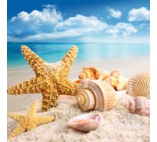 Остров свежести (NG Island Fresh) Ароматическое масло
