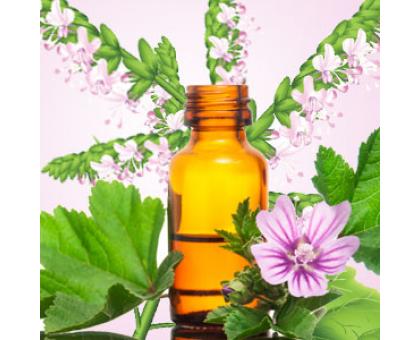 Пачули (Patchouli) Ароматическое масло