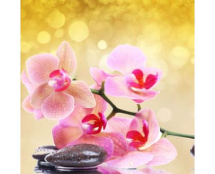 Розовая орхидея и янтарь  (Pink Orchid & Amber) Ароматическое масло