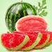 Вкус арбузных конфет (Sour Watermelon Candy) Ароматическое масло
